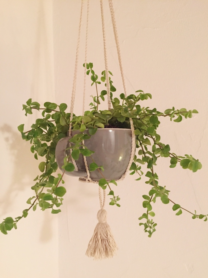 DIY: How to make your own plant hanger